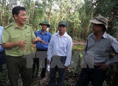 Lực lượng kiểm lâm phối hợp với chính quyền địa phương kiểm tra công tác phòng chống cháy rừng. (Ảnh: Huỳnh Sử/TTXVN)