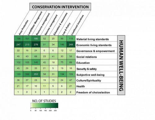 Sơ đồ bằng chứng so sánh số lượng nghiên cứu về tác động của bảo tồn thiên nhiên đối với con người tại các nước thu nhập thấp và trung bình. (Ảnh: SNAP)