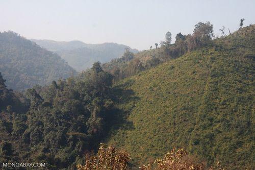Phá rừng gần khu bảo tồn quốc gia Nam Et-Phou Louey, Lào. (Ảnh: Rhett Butler)