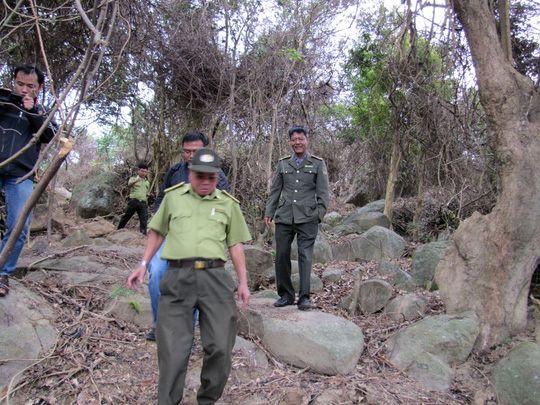 Hạt phó hạt kiểm lâm làm ngơ vụ phá rừng Sơn Trà