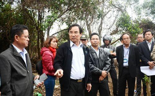 Phó Chủ tịch UBND TP Phùng Tấn Viết kiểm tra hiện trường và yêu cầu xử lý nghiêm các tổ chức, cá nhân xâm hại rừng Sơn Trà