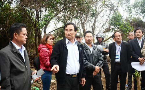 Vụ xâm hại rừng tại khu bảo tồn thiên nhiên Sơn Trà: Quản lý rừng quá hời hợt!