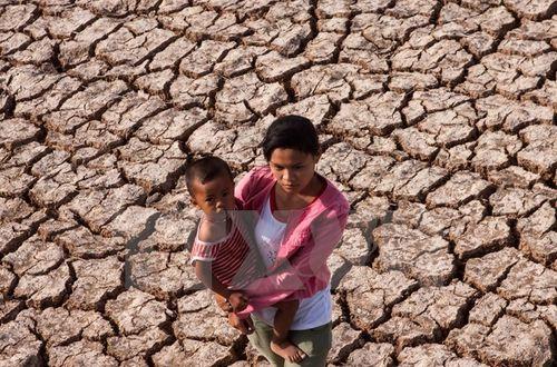 Hạn hán buộc Thái Lan phải đa dạng cây trồng ngoài lúa nước