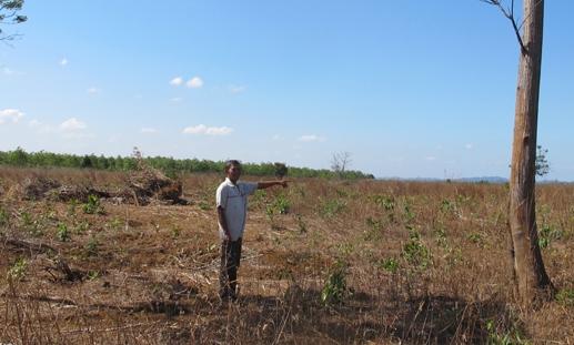 Lấy đất nuôi bò, làm khó người dân – Kỳ 2