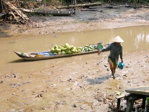Một con kênh ở tỉnh Hậu Giang đã cạn nước (Ảnh: Ngọc Trinh)