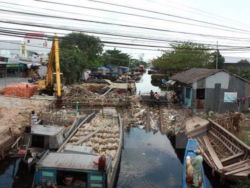 Đắp đập ngăn mặn xâm nhập vào vùng sản xuất xã Minh Thuận, huyện U Minh Thượng (Ảnh: Lê Sen/TTXVN)