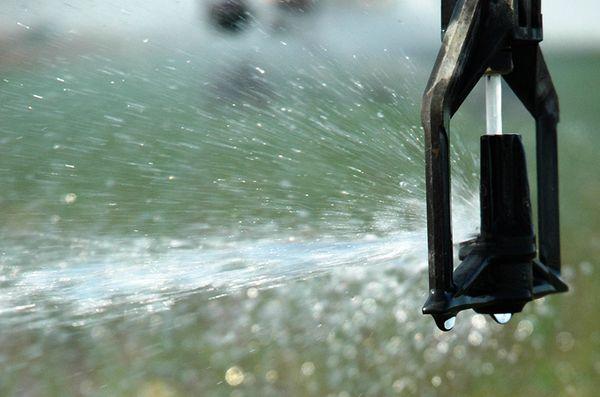 Quản lý nguồn nước – giải pháp cho tình trạng thiếu lương thực