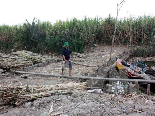 Đập ngăn mặn xâm nhập vào vùng sản xuất xã Minh Thuận, huyện U Minh Thượng, Kiên Giang (Ảnh: Lê Sen/TTXVN)