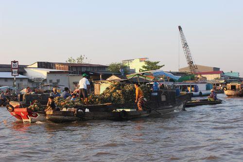 MRC sẽ đánh giá nghiên cứu Châu thổ Mê Kông của Việt Nam