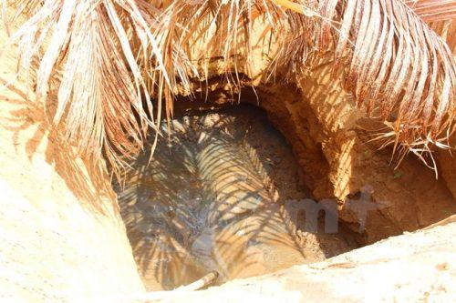 Những giếc giếng cạn kiệt nguồn nước ở huyện Ba Tri, tỉnh Bến Tre (Ảnh: Hùng Võ/Vietnam+)