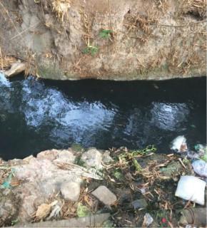 Nước có màu đen như nhớt xe máy (Ảnh người dân cung cấp).