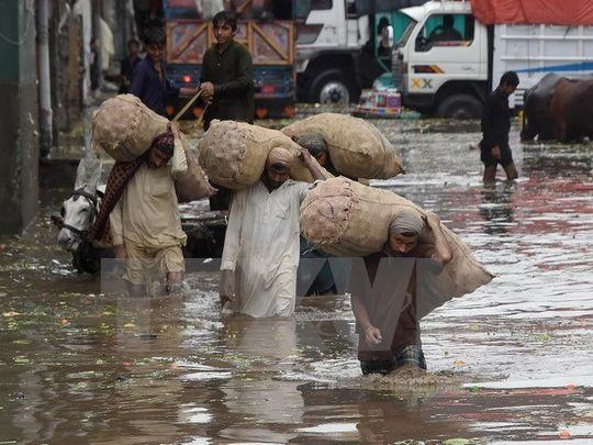 Mưa lũ khiến gần 50 người thiệt mạng tại Pakistan và Ấn Độ