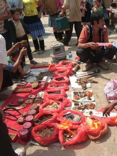 Một người bán hàng rong đang rao bán các loại thuốc cổ truyền từ vuốt hổ, pín hổ và sừng dê tại Trung Quốc. (Ảnh: Alpha)