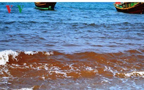Tiếp tục khảo sát các mặt cắt biển để xác định hàm lượng chất độc. (Ảnh minh họa: VOV)