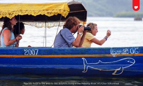 Du khách ngắm cá heo trên sông Mekong