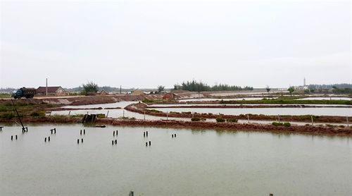 Khu vực ao đầm của người dân – nơi chuẩn bị xây dựng KCN dệt may Rạng Đông