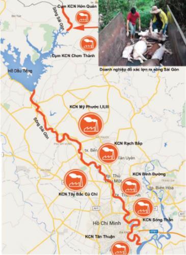 Vứt xác lợn chết gây ô nhiễm đầu nguồn và các khu công nghiệp bủa vây sông Sài Gòn (Infographic: B.T.K)