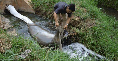 Theo kết quả kiểm tra của Tổng cục Môi trường, nước thải của Mei Sheng có nhiều thông số vượt chuẩn cho phép (Ảnh: Lam Phương)