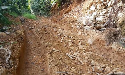 Để thuận tiện cho việc vận chuyển gỗ lậu ra khỏi cửa rừng, lâm tặc đưa xe bạt núi, mở rộng, san phẳng lại con đường cũ (Ảnh: Hưng Thơ)