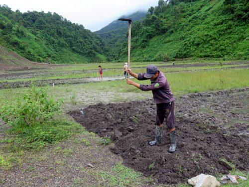 Sau 10 năm tái định cư, ổn định cuộc sống, hàng nghìn hộ dân vẫn đang thiếu đất sản xuất.