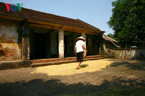 Sân gắn liền với ngôi nhà trong sản xuất nông nghiệp