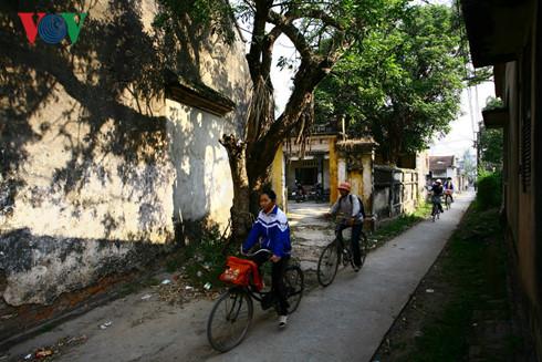 Làng quê với những con đường nhỏ và rợp bóng cây xanh
