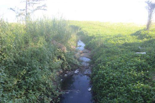 11 cửa xả dọc biển Nguyễn Tất Thành nước thải vẫn chưa được thu gom mà xả thẳng ra biển dẫn tới ô nhiễm.