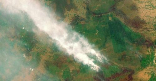 Cháy rừng ở Kalimantan, Indonesia. Ảnh ESA