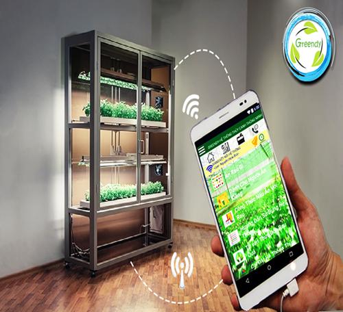 Trồng rau sạch nhờ ứng dụng điện thoại thông minh