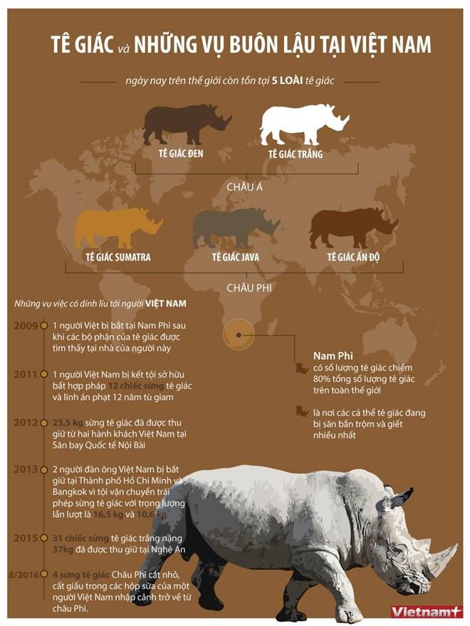 Nhìn lại những vụ buôn lậu sừng tê giác tại Việt Nam