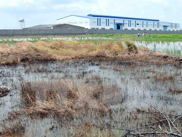Đức chia sẻ kinh nghiệm xử lý đất ô nhiễm tồn lưu kim loại nặng
