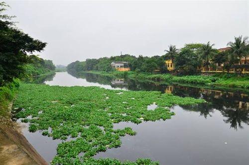 Sông Nhuệ ô nhiễm nặng, giải quyết thế nào?