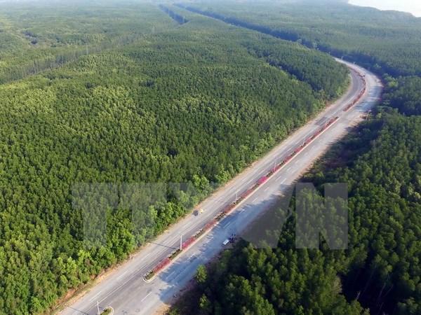 Đầu tư 50 tỷ đồng chăm sóc và bảo vệ rừng phòng hộ Cần Giờ