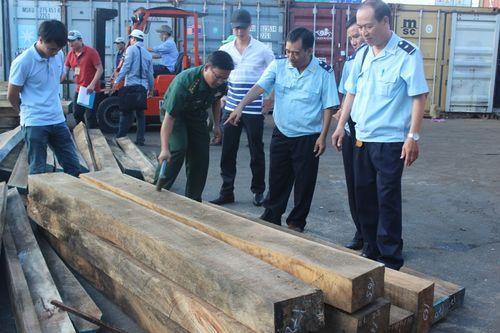 Hải quan và Bộ đội Biên phòng cùng kiểm tra những khối gỗ.