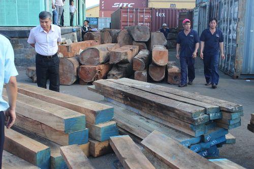 Lãnh đạo Đội 4 trực tiếp chỉ đạo kiểm tra kĩ các khối gỗ chứa trong container.