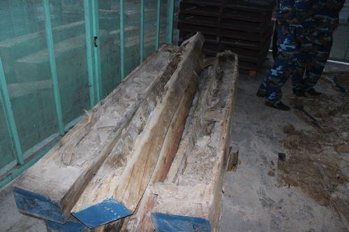 Những khối gỗ sau khi được lấy ngà voi.