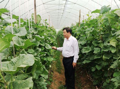 Đất nông nghiệp 'khát' nước sạch