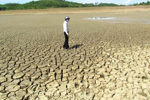 Dự án cấp nước an toàn vùng ĐBSCL: Cần sự quan tâm đặc biệt
