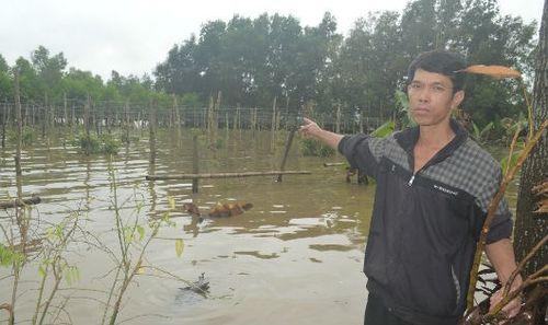 Đắk Lắk: Công ty cà phê tích nước gây khốn đốn cho dân