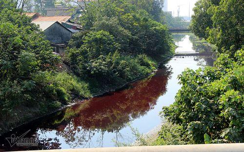 Hà Nội ráo riết truy nguồn gốc vụ nước sông đỏ quạch