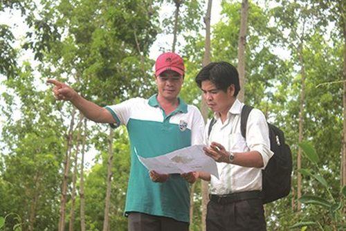 """Vụ """"Không trồng cao su, vẫn được bồi thường tiền tỷ"""": Cục Cảnh sát môi trường yêu cầu Công an tỉnh Bình Phước làm rõ"""
