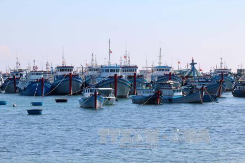 Bình Thuận thực hiện chiến lược quản lý tổng hợp vùng bờ