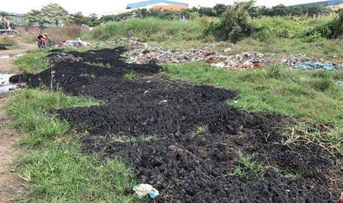 Cảnh sát môi trường lại bắt xe đổ bùn trái phép