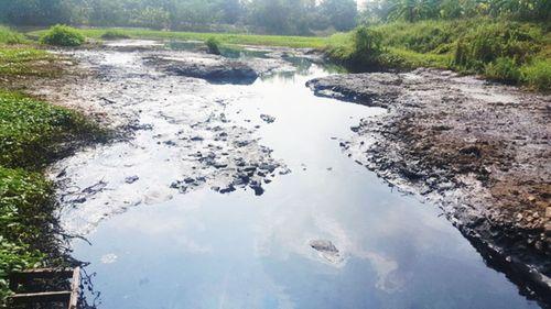 Phối hợp xử lý ô nhiễm nguồn nước hệ thống sông Bắc Hưng Hải