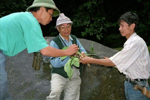 NY Times vinh danh GS Võ Quý là cha đẻ ngành bảo tồn thiên nhiên VN