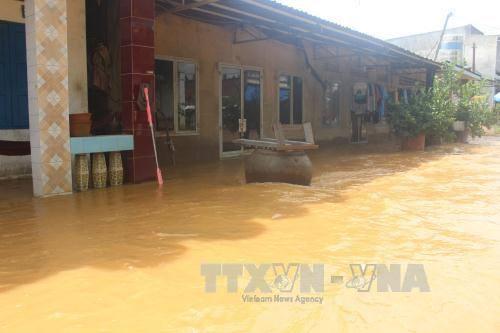 Nông dân Đồng Nai thiệt hại nặng do thời tiết thất thường
