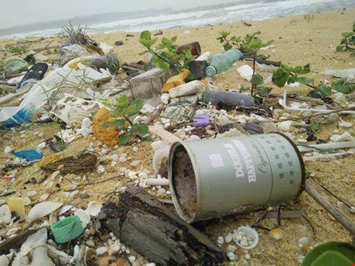 Dầu vón cục ở bờ biển: Quảng Nam cầu cứu Bộ TN&MT