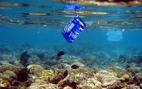 Các đại dương bị ô nhiễm vì hạt nhựa siêu nhỏ