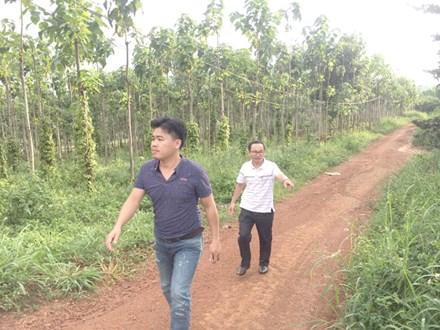 """Nguyên Thường vụ Tỉnh ủy chiếm dụng đất rừng ở Đắk Nông: Thu hồi """"sổ đỏ"""", xử lý cán bộ tiếp tay"""