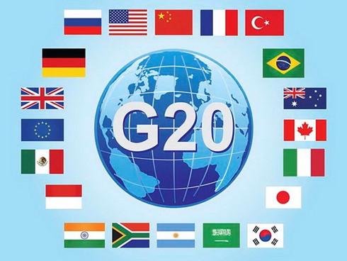 Việt Nam tích cực đóng góp nhiều ý kiến tại Hội nghị cấp cao G20